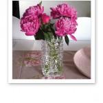 Nyplockade ceriserosa pioner i vas på bordet