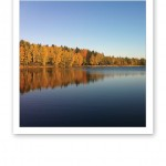 Klarblå himmel, höstfärgad skog och stilla vattenyta på sjön.