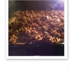 Utspridda valnötter på plåt i ugnen.