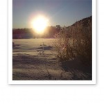 Bländande vintersol som lyser över Jämtländsk vit skare och blå himmel.