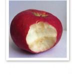 Ett rött äpple som det bitits en tugga ur, vitt fruktkött.
