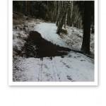 Snöig skogsstig med lera mitt i vägen.