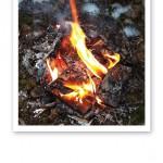 Närbild på en öppen eld, vars rödgula lågor slickar de torra träbitarna.