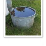 Närbild på en zinkbalja, fylld med vatten, på en grön gräsmatta nedanför ett stuprör.
