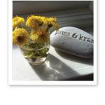 """Ett knippe gula tussilago i en mini-vas, bredvid en sten med texten """"puss och kram""""."""