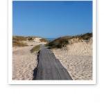 Sand, dynor, en promenadspång, blå himmel och hav.