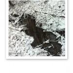 En stilla flödande rännil i skogen.