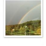 Dubbla regnbågar över en skog mot en grå himmel.