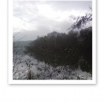 En grå vy över vatten, träd och brygga vid Årstaviken.