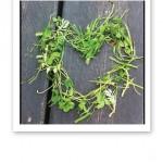 Ett hjärta format av grönt, repat gräs.