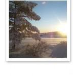 Solig vinterdag, med vit snö och blå himmel.