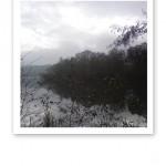 Gråkall vy i svartvit färgskala - vatten, skog och himmel.