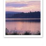 Vy över en sjö en stilla sommarkväll, med en himmel i rosa.