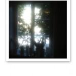 Fönster i Vasastan, med skarpt solljus utanför.
