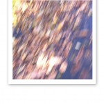 Suddiga löv på marken, en symbol för stress och högt tempo.