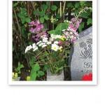 En blomma på graven.