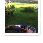 Gräsklippning, en gräsklippare och en vacker grönskande tomt.