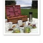 Picknickkorg i parken.