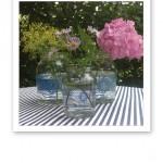 """""""Skördade"""" dillkronor, astrar och hortensia i glasburkar på ett bord."""