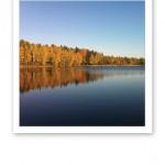 Höstfärger på trädens kronor nere vid sjön, i solskenet.
