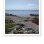 En gotländsk strand med vy över havet.
