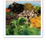 Läkande kost; färggrann mat på en turkos tallrik.