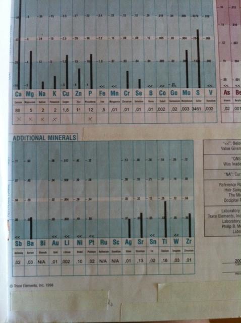 Hårmineralanalys år 2000.