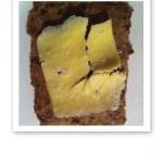 alternativt mungbönsbröd med smör