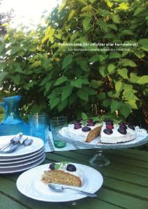 20161030-matbok-4-picknick-resa-kaka
